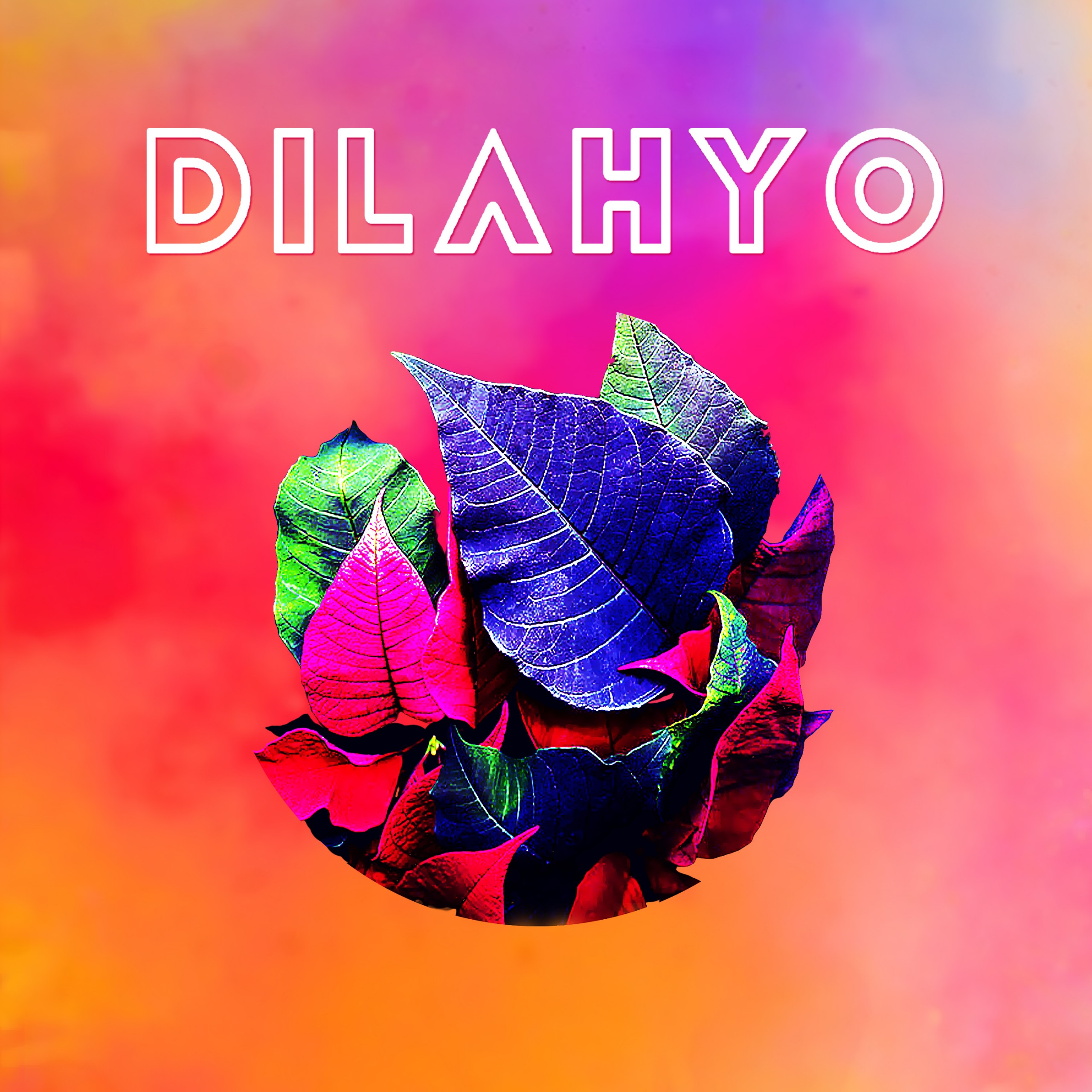 interview dilahyo groupe pop rock
