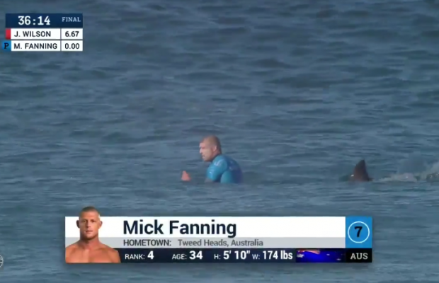 Mick Fanning attaqué par un requin en finale du J-Bay best of 2015