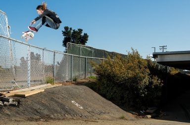 Extra Flare : Riley Hawk skateboard