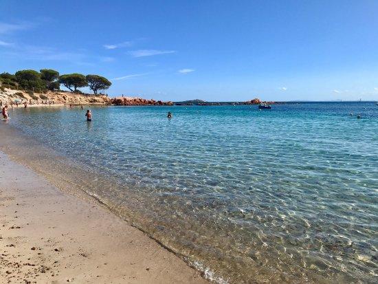 plage-de-palombaggia-porto-vecchio-corse